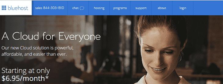 BlueHost Website