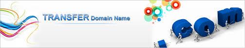Transfer Domain name