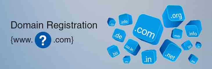 Domain name providers