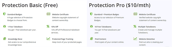 Features of Basic and Paid Protection DMCA
